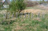 Купить земельный участок в д. Кашино